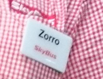 helden_zorro2