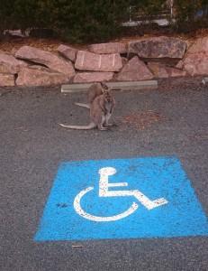 jerks_parkeerplaats