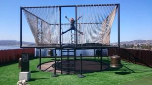 mona_trampoline