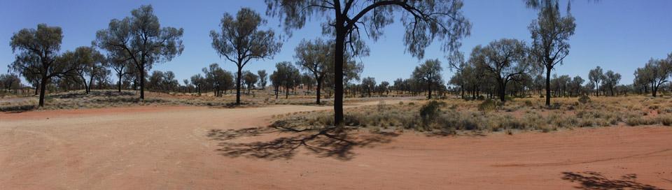 woestijnrit03